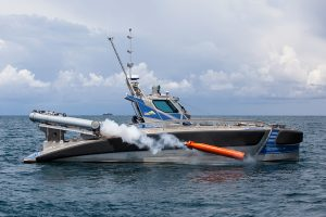 Seagull torpedocredit Galina Kantor_MG_474jpg